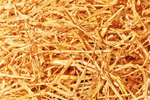 Picture of Straw