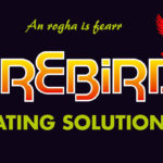Cost Saving Innovations From Firebird
